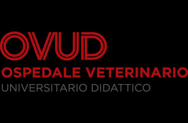 Collegamento a VTH, The Veterinary Teaching Hospital