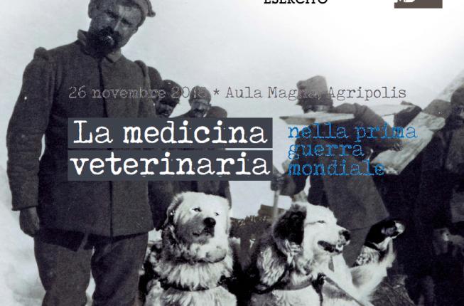 Collegamento a La Medicina Veterinaria nella prima guerra mondiale